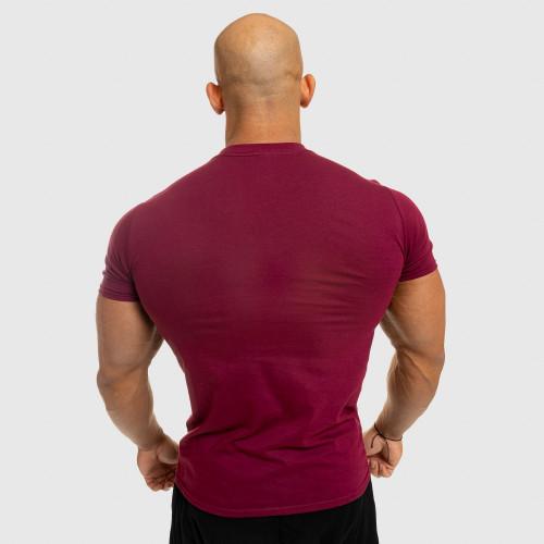 Pánské fitness tričko Iron Aesthetics Standard, bordové