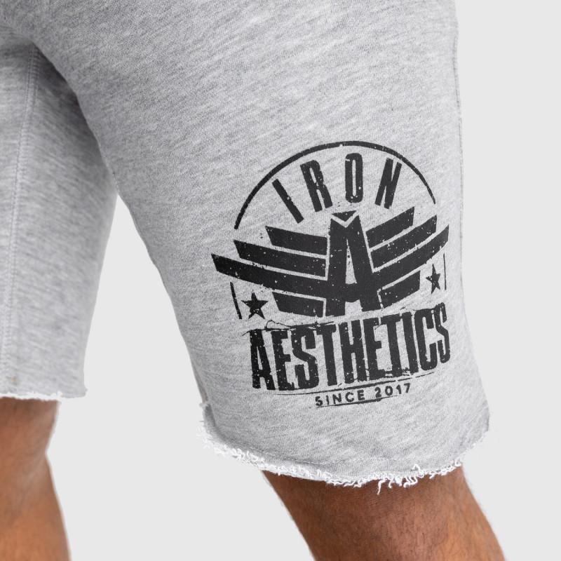 Pánské teplákové kraťasy Iron Aesthetics Force, šedé-5