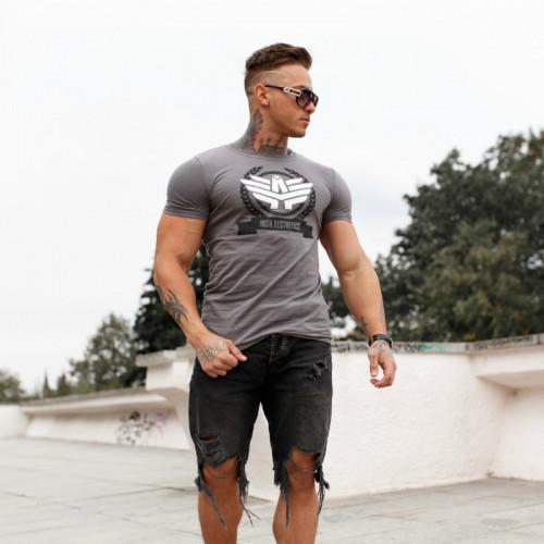 Pánské fitness tričko Iron Aesthetics Triumph, Šedé