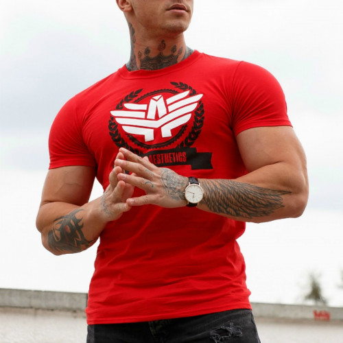 Pánské fitness tričko Iron Aesthetics Triumph, červené