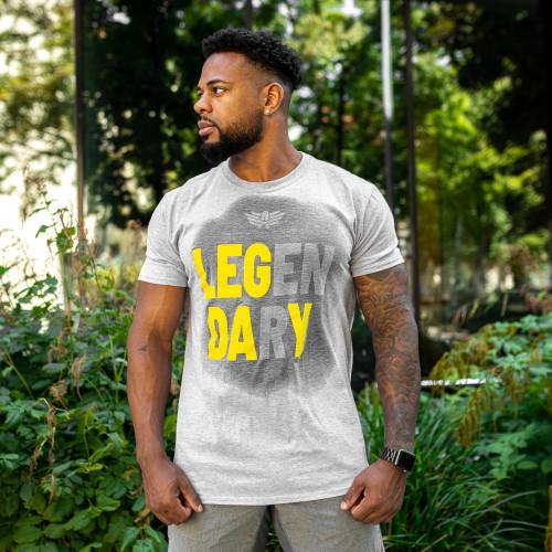 Pánske fitness tričko Iron Aesthetics Activated Leg Day, sivé