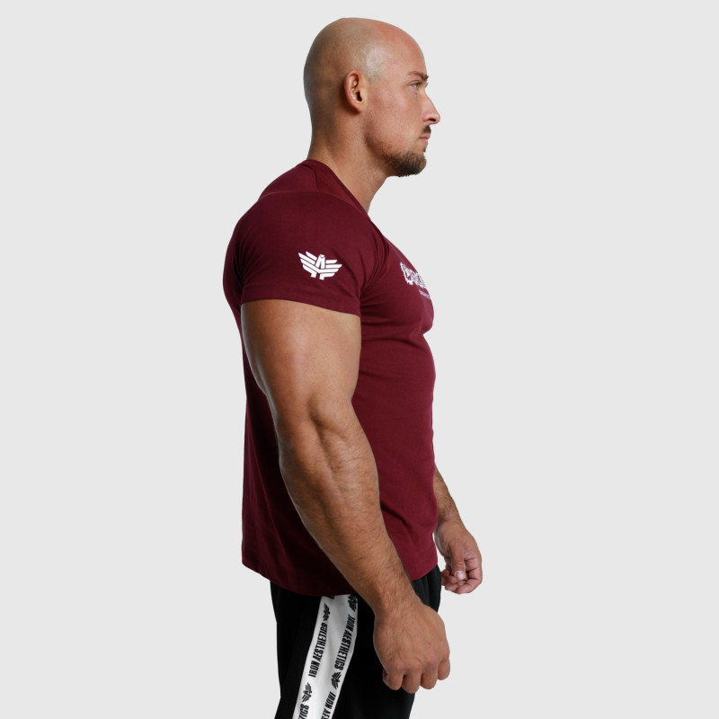 Pánské fitness tričko Iron Aesthetics Unbroken, bordové-6